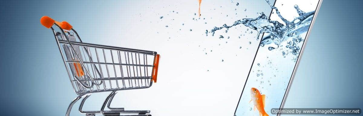 New Report Shows US E-Commerce Growing Rapidly